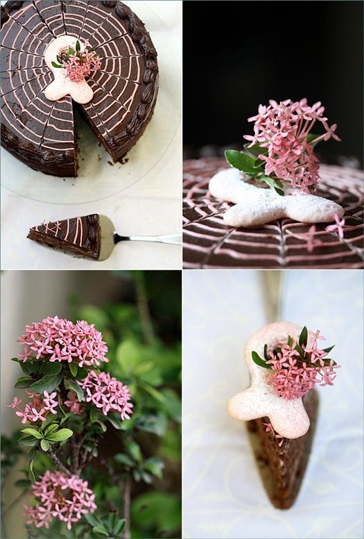 Chocolate & Strawberry Cream Cake