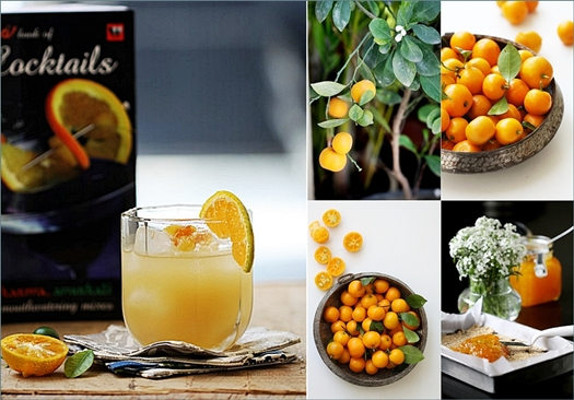 Book Review| The Tulleeho! Book of Cocktails … & an Orange Zinger