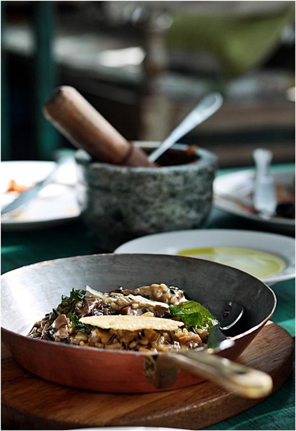 Exotic Mushroom Risotto,  Olive Bar & Kitchen, Mehrauli, Delhi