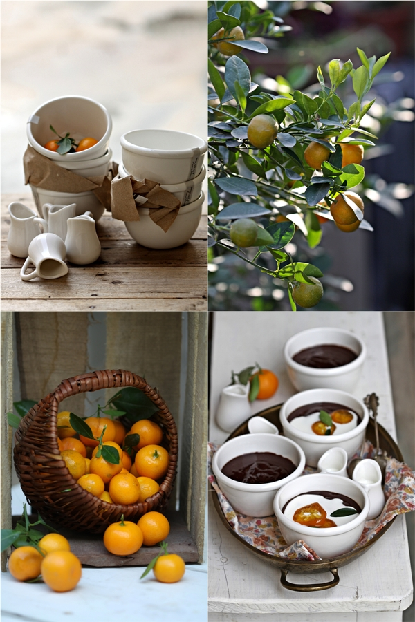Dark Chocolate & Kumquat Creme Pots