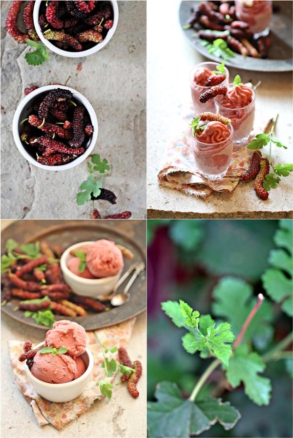 Mulberry Strawberry Buttermilk Sorbet