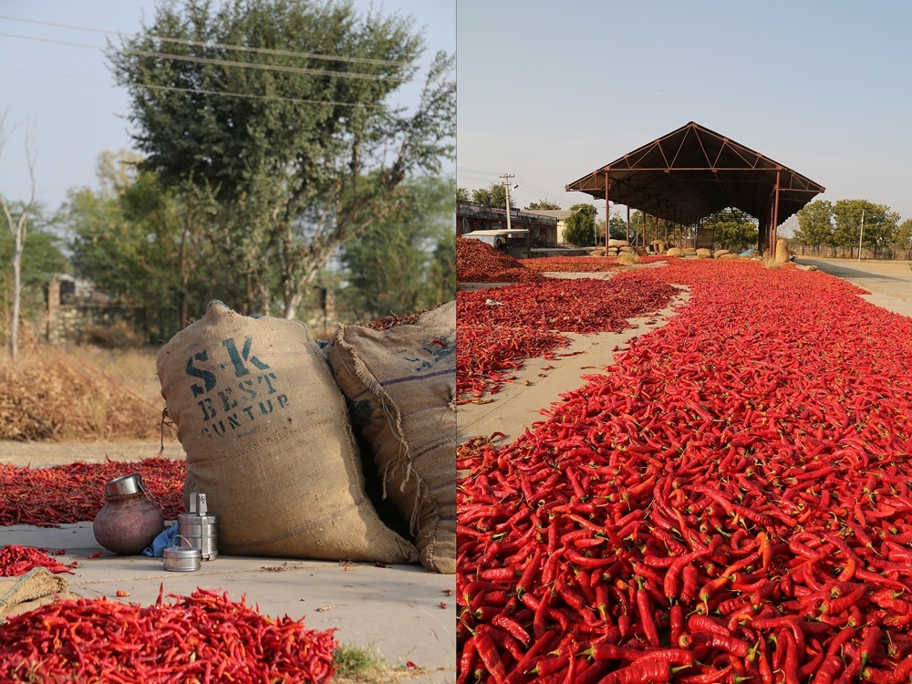 Local spice market, Raipur