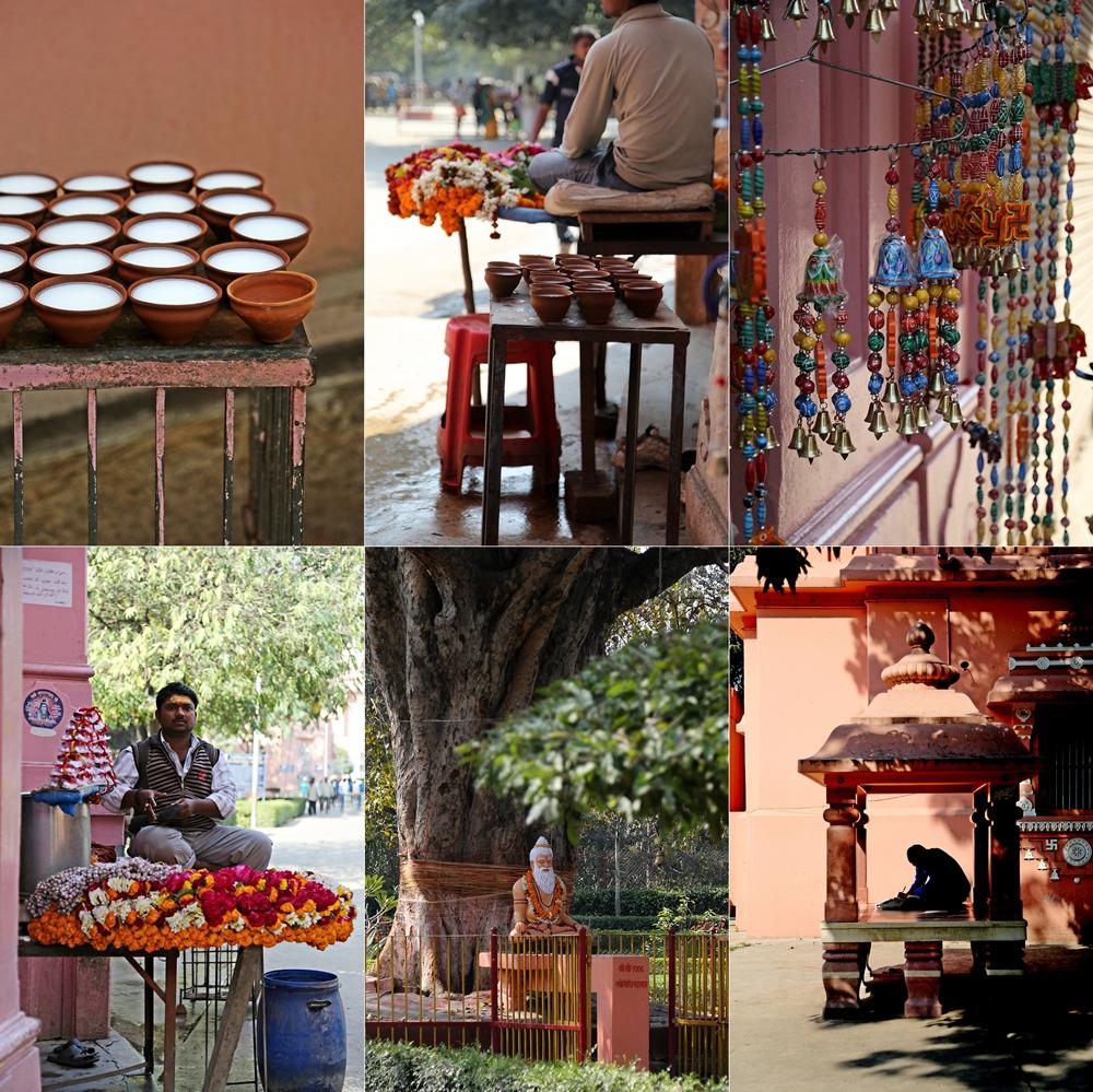 BHU Banaras 2016