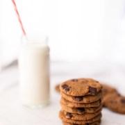 Coconut Flour Choc Chip Cookies