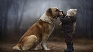 foto_dog_friend