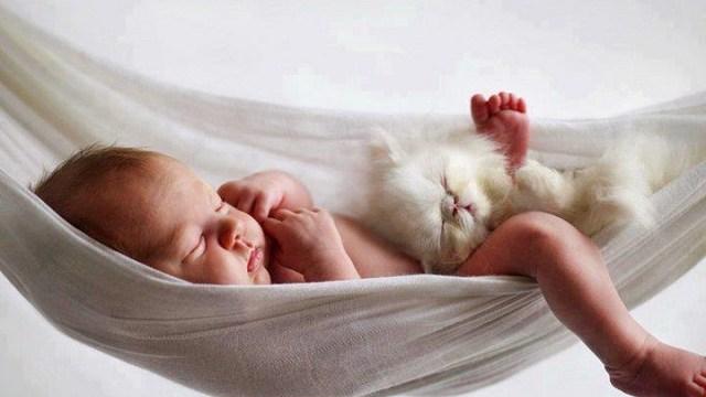 foto_agopuntura infertilità
