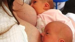 foto_allattare gemelli