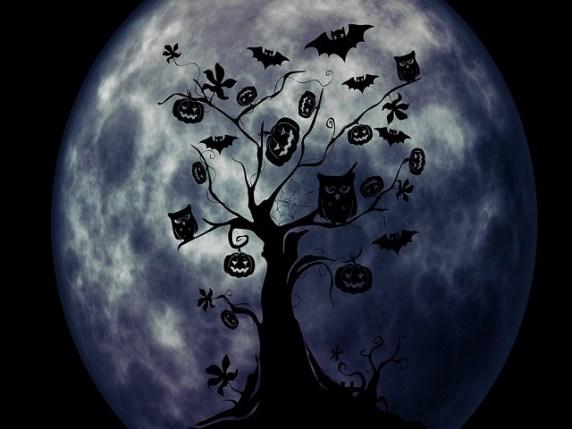 foto_albero_halloween