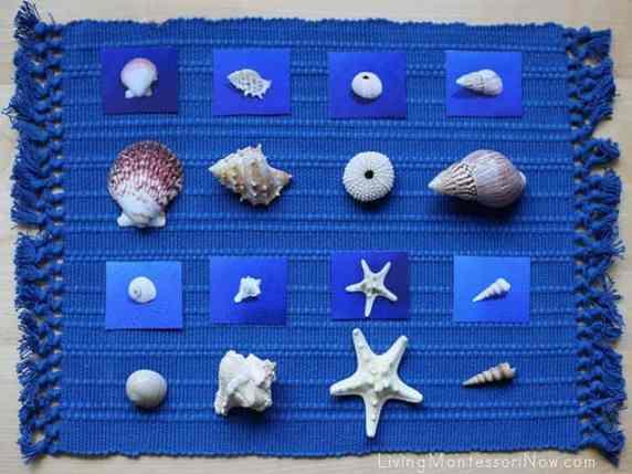 attività estive Montessori