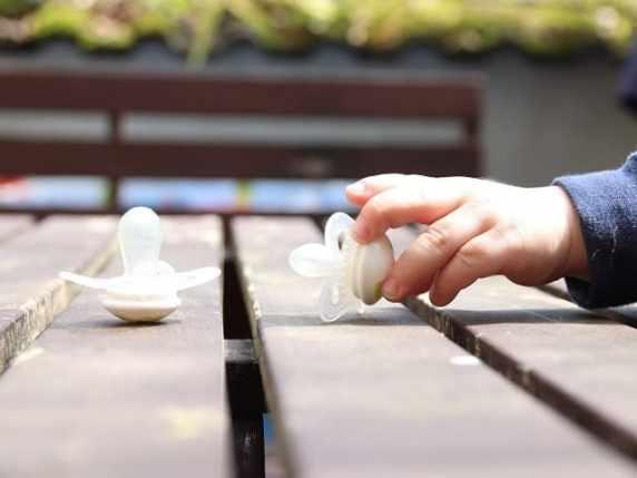 foto ciuccio sul tavolo