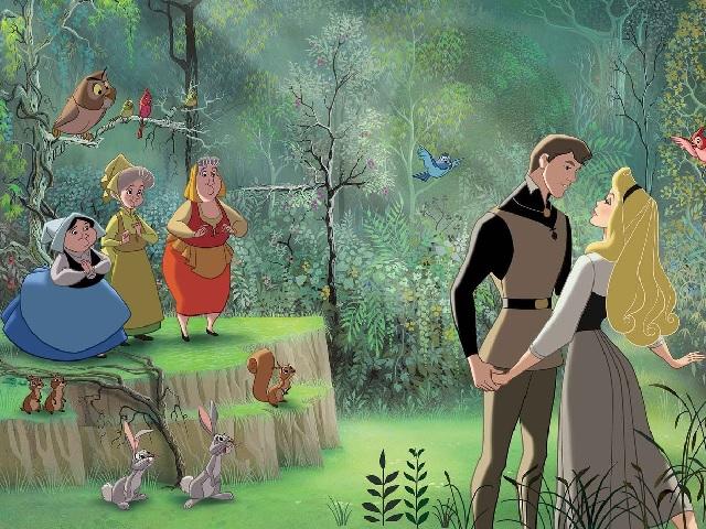 La bella addormentata nel bosco collection edition dvd amazon