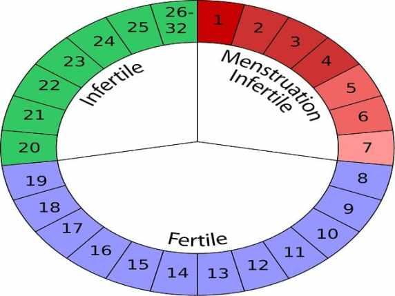 foto periodofertile