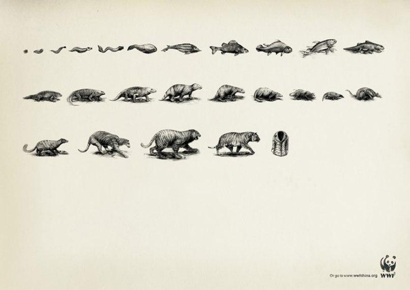 public-social-ads-animals-56[1]
