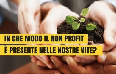 siamo non profit