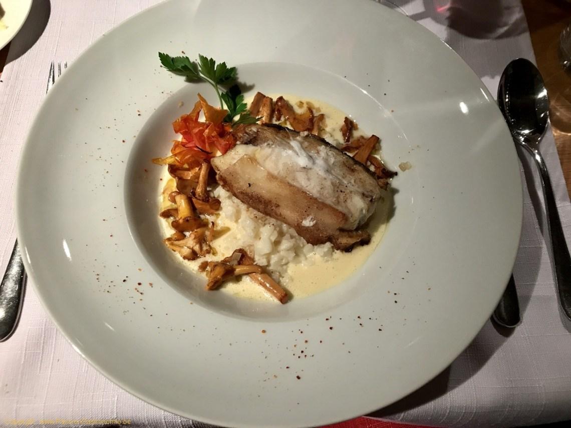 Restaurant La Malterie - Turbot rôti, risotto aux girolles, sauce champagne