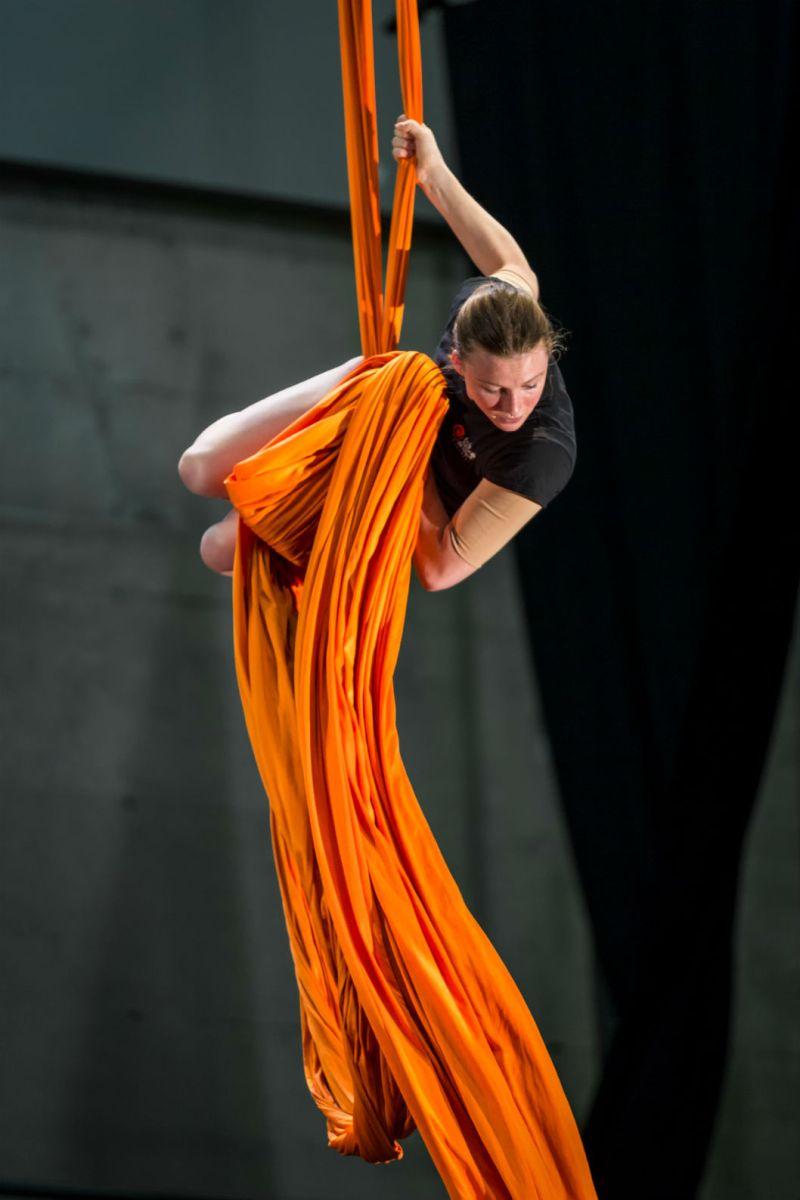 Cirque-