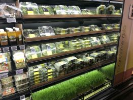 AVRIL salades