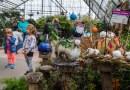 Le Grand Bal des citrouilles au Jardin botanique de Montréal : L'activité automnale par excellence.