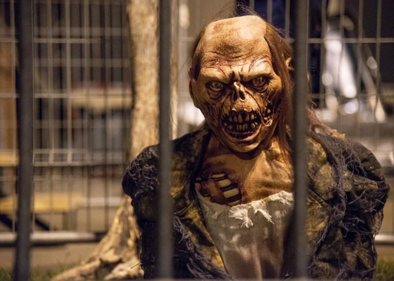 amateurs d'horreur se rencontrent zombie