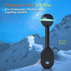 Mer Grenouilles 2,5cm Boule de Fixation pour Sabot connecteur pour la vidéo/Flash/lumière stroboscopique