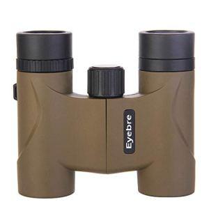 Ueccicou Jumelles 10X22 HD – Télescope portatif d'observation de Vision Nocturne de Faible Niveau de lumière pour Une Utilisation en extérieur (Couleur : Marron)