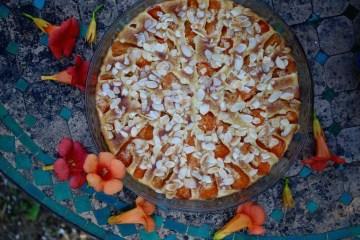 gratin aux abricots