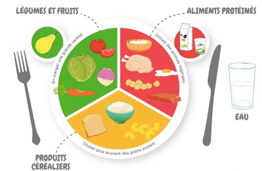 Repas structuré : que mettre dans son assiette ?