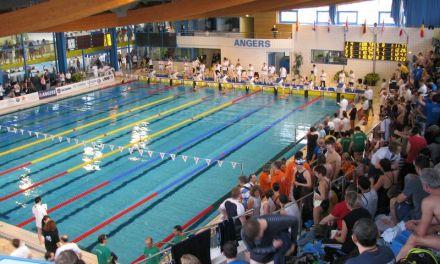 Des nouvelles têtes sortent de l'eau aux Championnats de France de Natation à Angers.