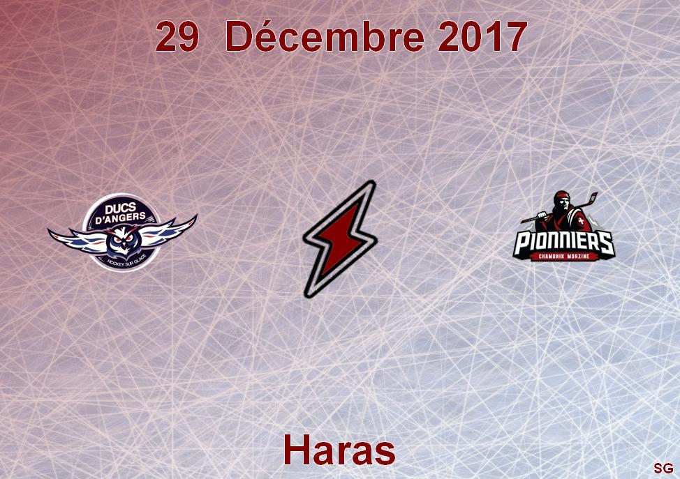 Ligue Magnus (30e journée) : Les Ducs d'Angers reçoivent les Pionniers des Chamonix, ce vendredi, à 20h30 !