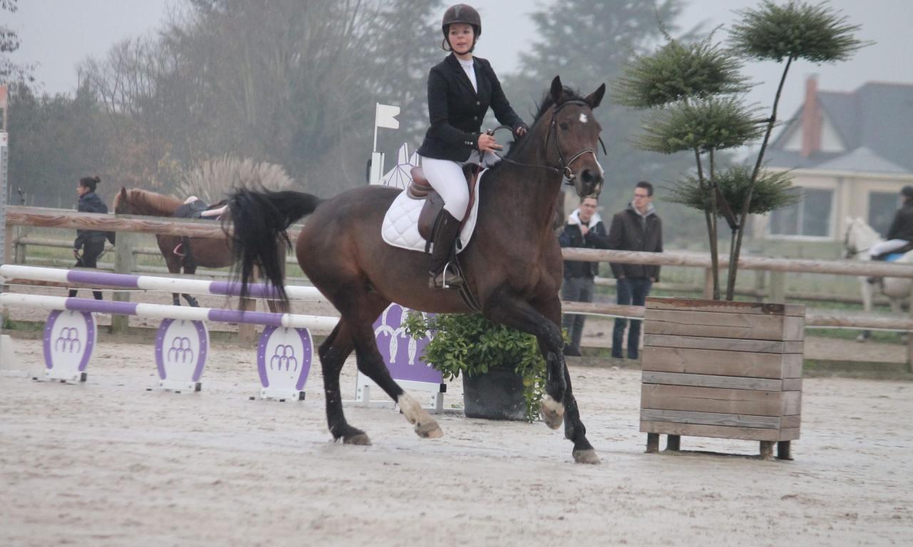 La Pélerinière équitation : Entretien avec Hyacinthe Giraud.