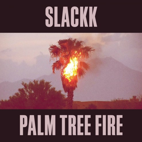 Slackk_Palm_Tree_Fire_Local_Action_Album_Artwork