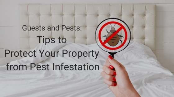 Pest Infestation: Protect your Airbnb property