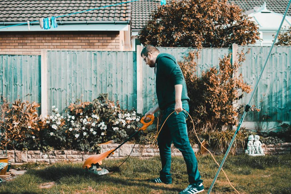 Spring Cleaning - mow your lawn