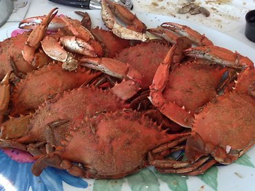 Blue Claws at the St Lucie Crabhouse