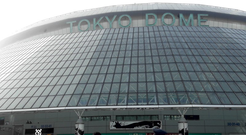 Experiencing a Baseball Game at the Tokyo Dome
