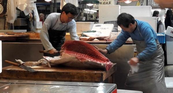 11 Tokyo Fish Market Cutting Fish