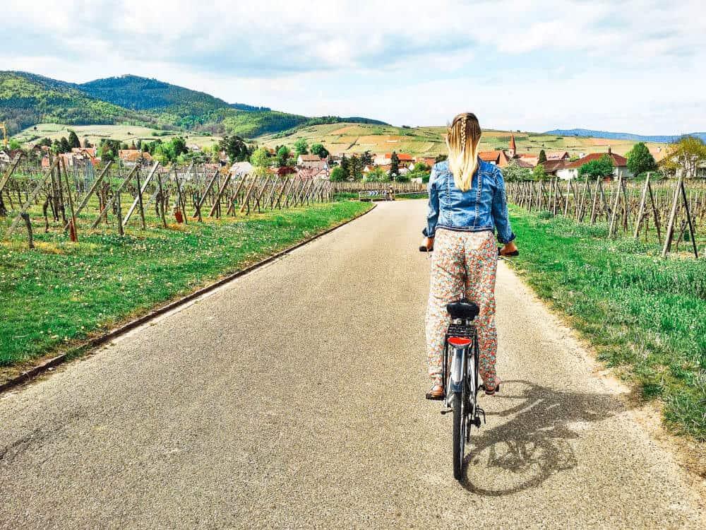 Biking through Alsace, France
