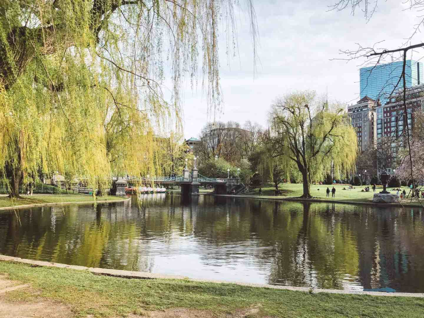 Top 10 Things to Do in Boston - Boston Public Garden