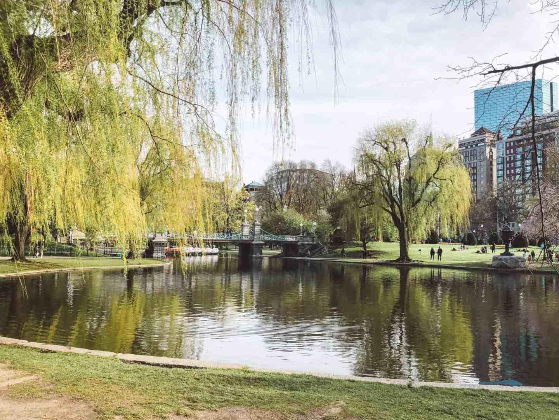 Top 10 Things to Do in Boston - Boston Public Garden