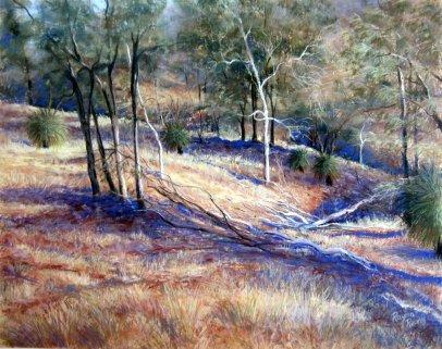 Rayma Reany - Western Australian Bushland - 75 x 65cm
