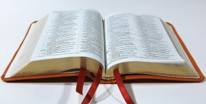 biblical-illiteracy-expository-preaching