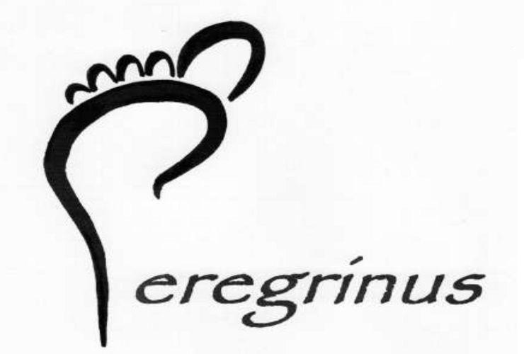 Resultado de imagen de peregrinus jesuitas