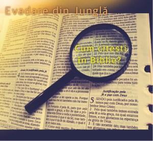 Read more about the article Cum citești în Biblie?