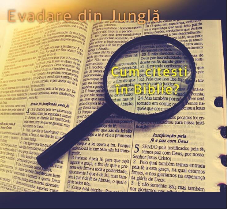 You are currently viewing Cum citești în Biblie?