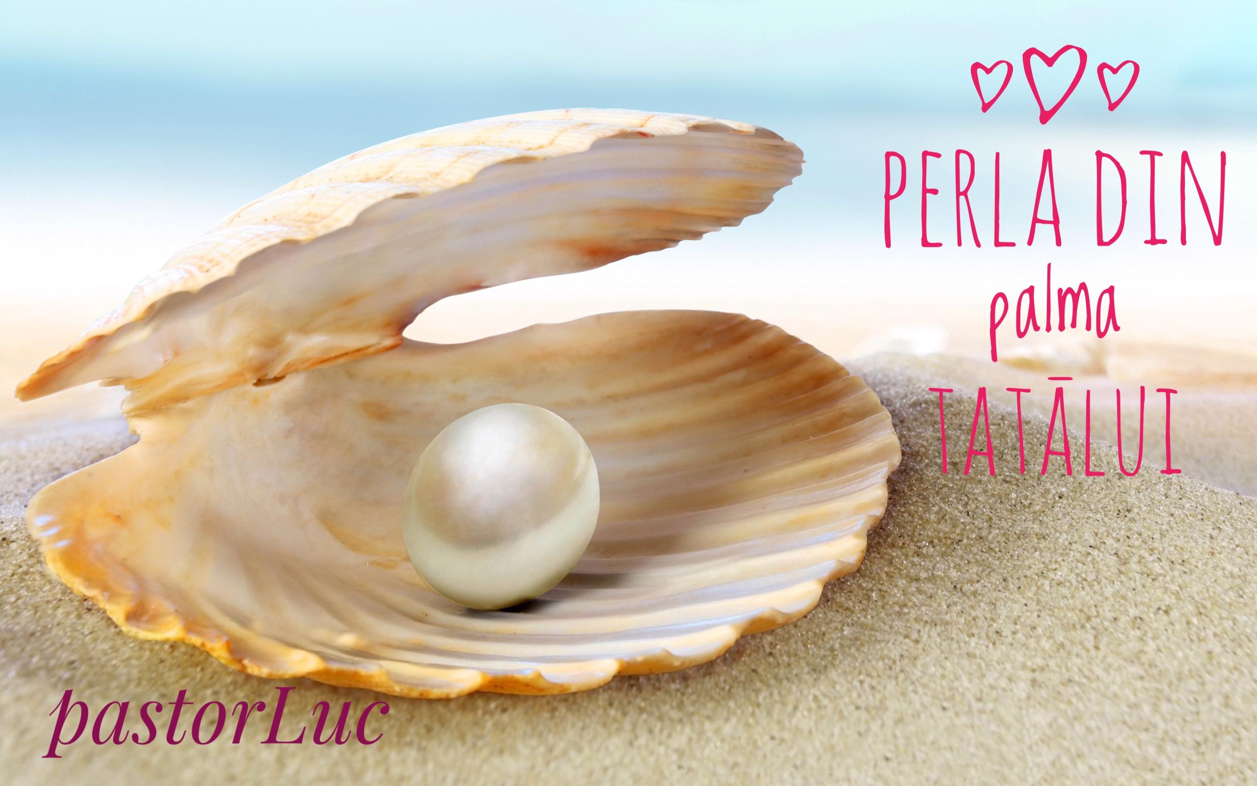 Read more about the article Perla din palma Tatālui!