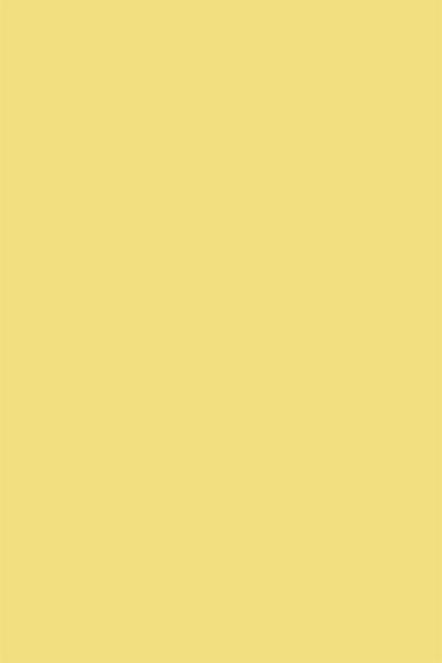 fond photo lemon jaune uni