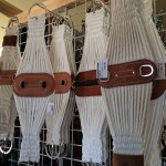 horse supplies-https://www.pasturaslosalazanestx.com