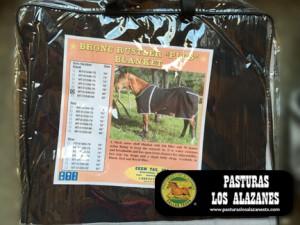 Bronc Rustler Plus Horse Blanket