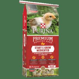 Chicken Care :: Pasturas Los Alazanes
