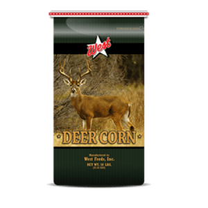 West Feeds Whole Deer Corn